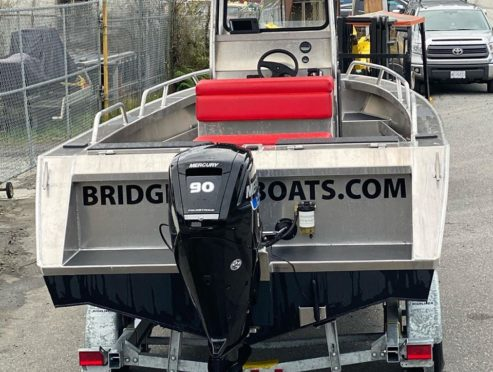 Bridgeview boat with centre console