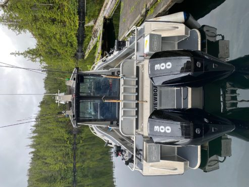 Centre cabin boat with dual outboard motors